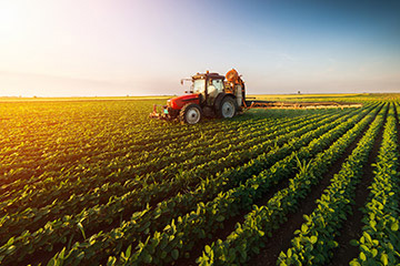 农业农村部:确保2020年粮食产量稳定在1.3万亿斤以上