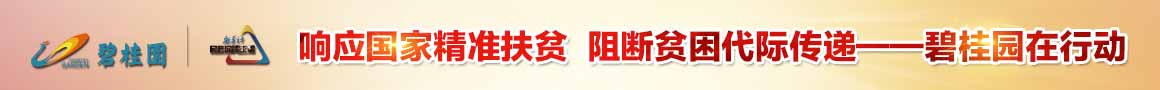 碧桂园 新华社民族品牌工程